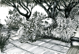 outdoor-drawing-nature